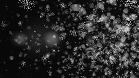 Snowflakes Light Transitions