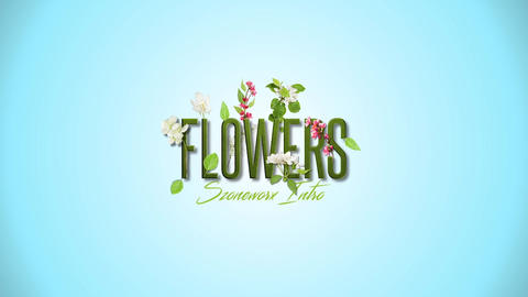 Flowers Logo Intro After Effects Template