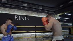 Two boxers start fight training boxing ring HD video. Fighters sparring: punches Footage