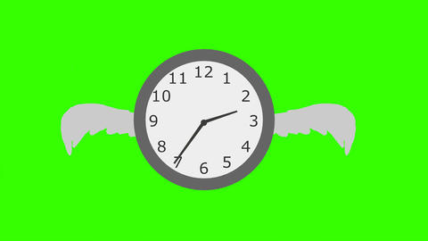 """Time Flies"", Animation: Loop + Matte Animation"