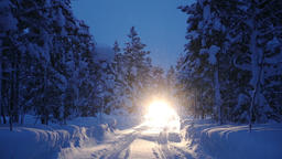 Headlights in Winter Forest and Snowfall Footage