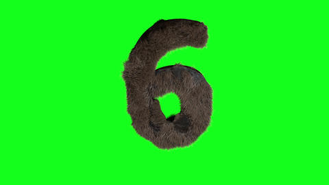 Abstract number digit 6 six sign hairy number 6 six green screen 6 six green screen hairy green Animation