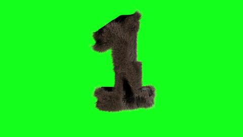 Abstract number digit 1 one sign hairy number 1 one green screen 1 one green screen hairy green Animation