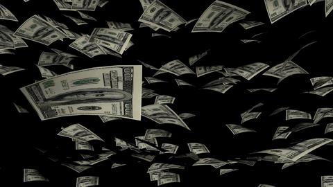 Animation of Dollars fall on background Animation