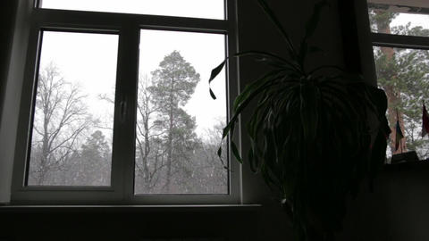 Snow Outside the Window 01 Footage