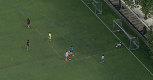 Boys and girls play football on a green field and scores a goal in gates ビデオ