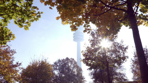 View on Autumn trees and TV tower from below Footage