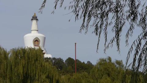 BeiJing BeiHai Park White Tower&Tibetan Buddhism.willow branches in breeze w Footage