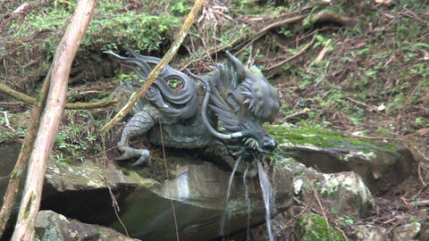Dragon Holy Water shrine Nikko Stock Video Footage