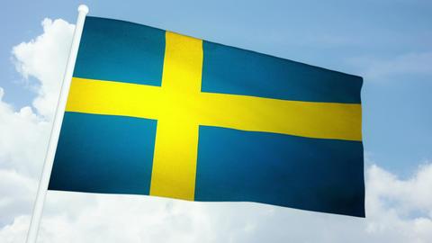 Flag Sweden 03 Stock Video Footage