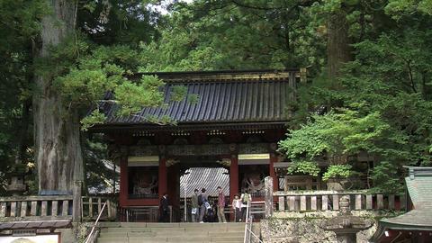 Nikko shrine Stock Video Footage