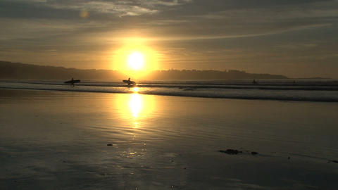 surfer walking on the beach Stock Video Footage