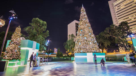 People taking photos by a big christmas tree Footage