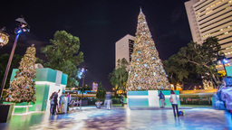 People taking photos by a big christmas tree Stock Video Footage