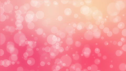 Pink orange bokeh holiday background Animation