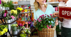 Smiling florist holding open sign on slate in flower shop Live Action