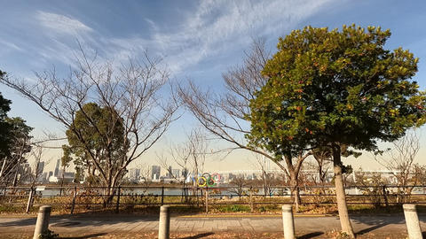Running image. Near Odaiba Marine Park, Tokyo Live Action