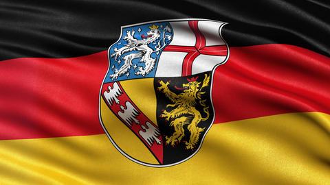 Saarland state flag seamless loop Animation