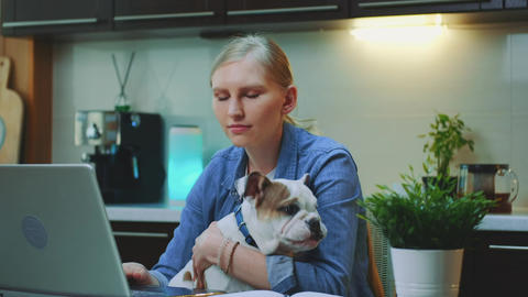 Close-up shot of cheerful woman hugging small dog in the kitchen Live Action