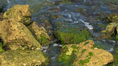 Overhead Shot of Waves Crashing Over Rocks, 4K Footage