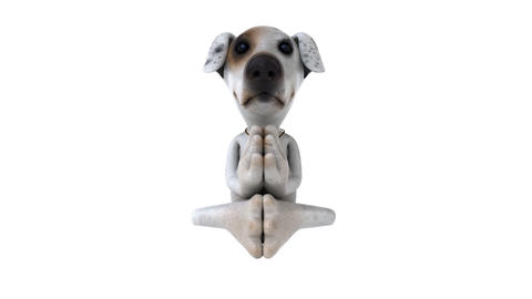 dog zen Animation