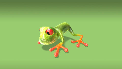 frog1 Animation