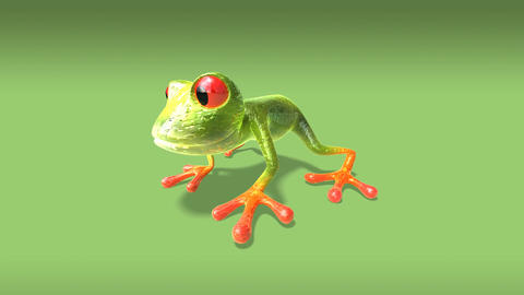 frog1 Stock Video Footage