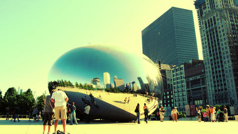 The Bean Stock Video Footage