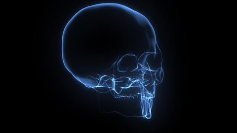 X-Ray Skull Stock Video Footage