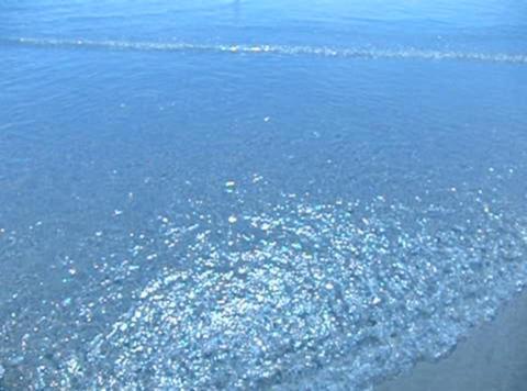 Ocean Wave 032 Footage