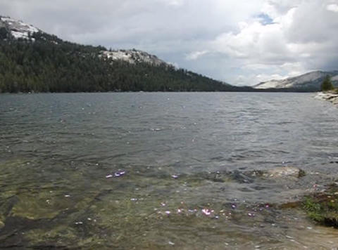 Tenaya Lake 1 Loop Footage
