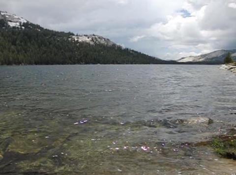 Tenaya Lake 1 Loop Footage