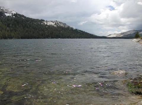 Tenaya Lake 1 Loop Stock Video Footage