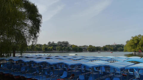 a row of blue boats on lake,swing willow in China Beijing... Stock Video Footage
