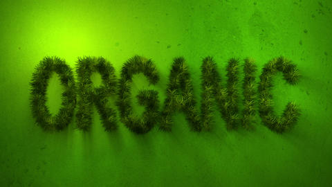 Organic Word Made Of Grass. stock footage
