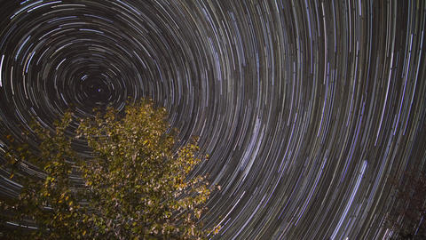 Star Trails of the night sky Stock Video Footage