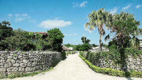 landscape of Taketomi island Stock Video Footage
