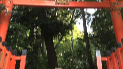 Fushimi Inari Temple tilt Stock Video Footage
