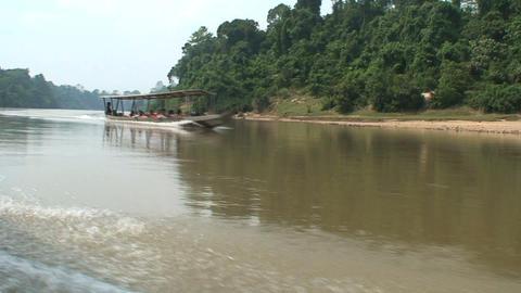 jungleboat crossing Stock Video Footage
