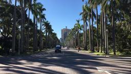 The Avenue National Taiwan University NTU Taipei Taiwan TL2 Footage