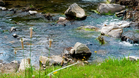 Beautiful water stream in mountains at sunny spring day. Beautiful landscape of Live Action