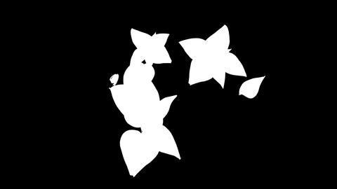 botanical 0605 loop 98-193f partsMask Animation