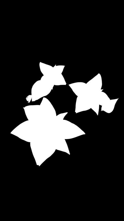 botanical 0605vertical loop 98-193f partsMask Animation