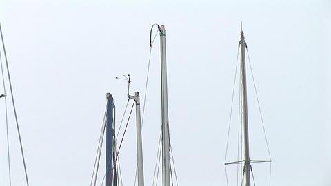 mast Footage