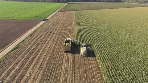 Aerial view of a farmer harvesting silage Stock Video Footage