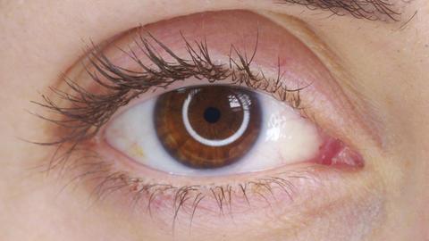 Beautiful human eye close-up. Young Woman brown one eye. Macro Closeup eye Live Action