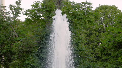 Fountain water jet splashing against green foliage of trees - slow motion Live Action