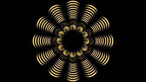 Animated golden decoration with fantasy flower shape on black bakcground. Geomet Animation