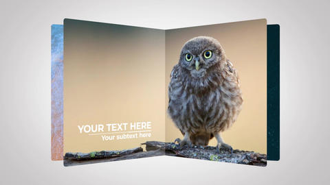 Turn the Page Slideshow After Effects Template