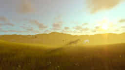 Two horses on green meadow, morning haze Animation